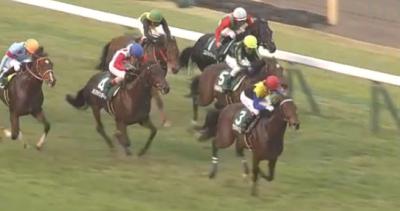 東京芝1800m/騎手・種牡馬データ(2018東京スポーツ杯2歳S)  データ消去法から残る5頭