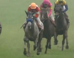 京王杯スプリングカップ(2018)データ分析!前走1200mだった馬で●●は(0-0-0-26)