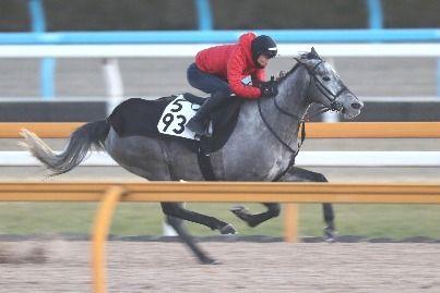 【競馬】秋山真一郎ってうまいはずなのに