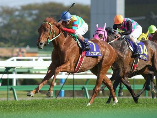 【競馬】タキオンとかドゥラメンテみたいに短い競走生活の間にボコった相手がその後活躍しまくるのって