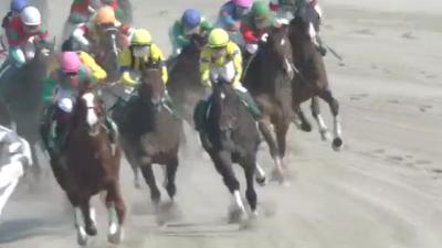 京都ダ1900m/騎手・種牡馬データ(2018平安S)