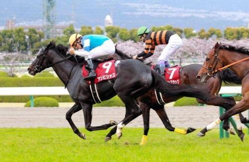【安田記念】横山典「2着じゃダメ。極端な騎乗も、僕の中では勝つための乗り方」