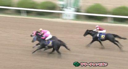 【競馬】佐賀のサマーチャンピオンは武豊騎乗のラインシュナイダーがV