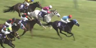 東京芝1600mの傾向とヴィクトリアマイル登録馬の東京芝実績