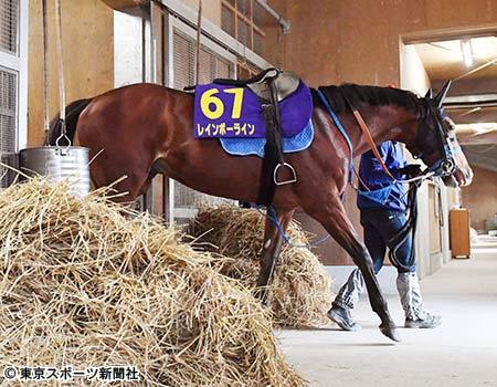 【競馬ネタ】能力は足りないけど、厩舎の育成力様様でG1勝った馬は?(2歳G1は除く)
