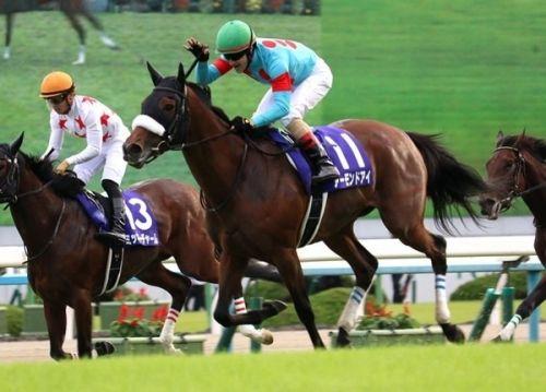【秋華賞】ルメール「アーモンドアイは今まで乗った中で一番強い馬です」