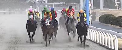 7月22日[高確馬(地方Ver)]川崎競馬(4R,10R,11Rばん馬が川崎競馬場にやってきたよ記念)