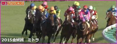 中京芝2000mの傾向と第52回金鯱賞登録馬の中京芝実績