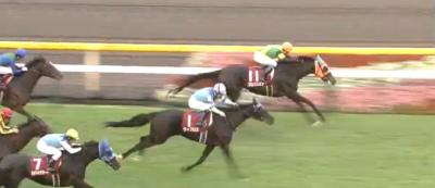 東京芝1800m/騎手・種牡馬データ(2018府中牝馬S)