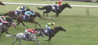 東京芝1600mの傾向と安田記念登録馬の東京芝実績