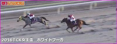 【TCK女王盃】データまとめ&予想