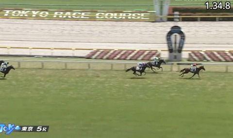 【競馬】新種牡馬ロードカナロア産駒が早くも新馬勝ち ノヴェリスト産駒も勝つ