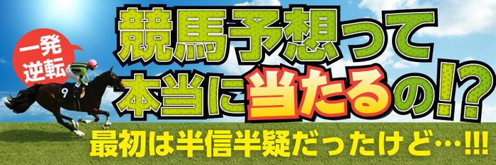 東海ステークス2018/出走登録馬と血統