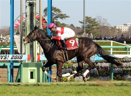 【皐月賞】クラシック最有力馬、ダノンプレミアムが皐月賞を回避!