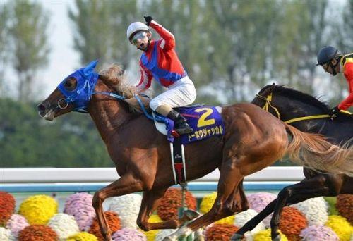【競馬ネタ】菊花賞のみクラシック一冠馬の最強Best3はゴルシ・エピファ・キタブラで異論は無しな