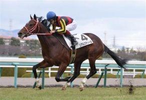 【競馬】 リアルスティール、中山記念は戸崎騎手と新コンビ