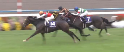 京都芝2000m/騎手・種牡馬データ(2018秋華賞)