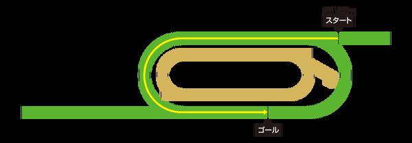 ドバイターフ2018/枠順と予想