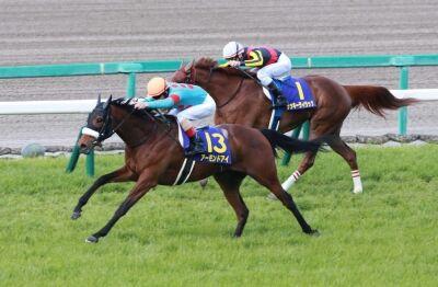 【競馬】 宝塚記念ファン投票第二回中間発表、アーモンド首位、ラッキー2位、サートゥル3位浮上