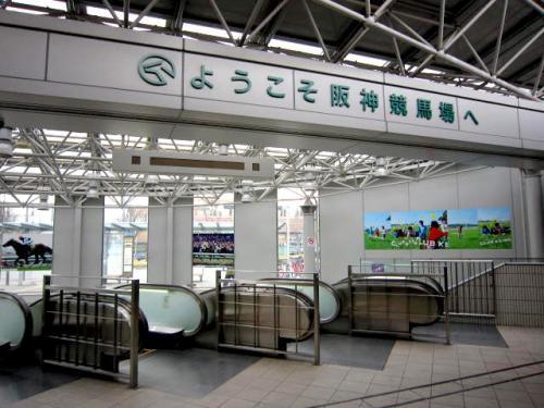 【大阪杯】見に行くんだけど、阪神競馬場のおすすめ教えろ!