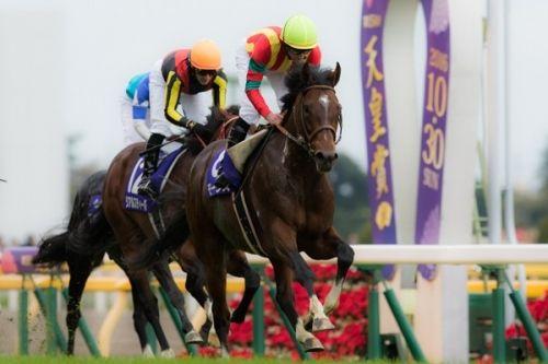 【競馬ネタ】日本三大「早熟と思ってたら晩成型」