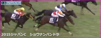 ジャパンC 外国馬は●●で(0-0-0-39)