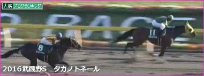 東京ダ1600mの傾向と武蔵野S登録馬の東京ダート実績