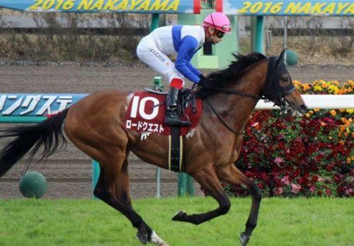 【競馬】血統に違和感がある馬