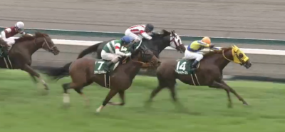 福島芝1800mの傾向とラジオNIKKEI賞登録馬の福島芝実績