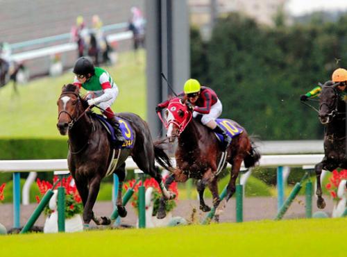 【競馬ネタ】今YouTubeでエピファネイアって馬のレース見てるんだけど
