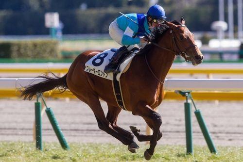 【競馬】神の末脚を持つといわれる超大物グレーターロンドンが今週日曜の中山・東風Sで見られる件