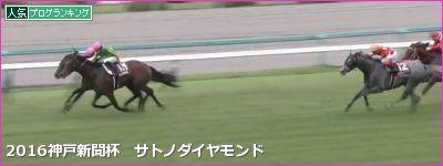 阪神芝2400m・外の傾向と神戸新聞杯登録馬の阪神芝実績