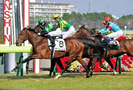 【競馬】キタノコマンドールはM.デ厶で皐月賞