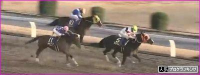 12月12日[高確馬(地方Ver)]川崎競馬(2R,5R,12R第22回全国梅サミット開催記念)