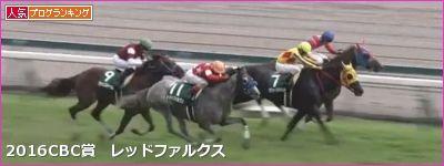 中京芝1200m/騎手・種牡馬データ(2017CBC賞)