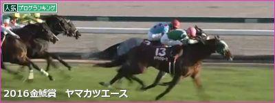 中京芝2000mの傾向と第53回金鯱賞登録馬の中京芝実績
