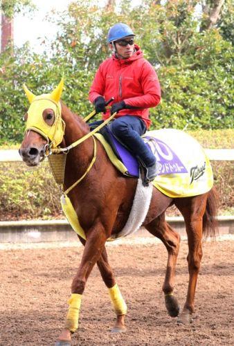 【競馬】大野拓弥31歳「だんだん疲れがたまって抜けないようになってきた。週中は疲れを取るのが中心」