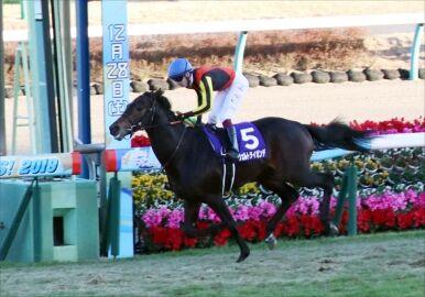【競馬】 ヴェルトライゼンデ骨折 全治3ヶ月