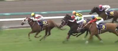 阪神芝1600m・外の傾向と桜花賞,阪神牝馬S登録馬の阪神芝実績