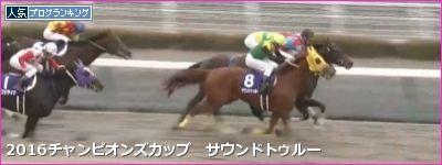中京ダ1800m/騎手・種牡馬データ(2017チャンピオンズカップ)