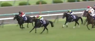 阪神芝2200mの傾向と宝塚記念登録馬の阪神芝実績