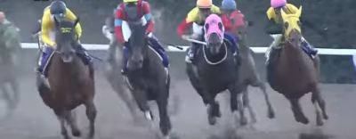 8月2日[高確馬(地方Ver)大井競馬(4R,6R,11Rトゥインクルバースデー賞)