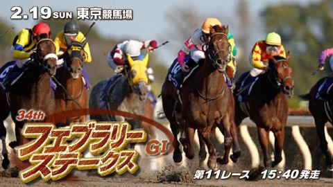 【競馬】第34回フェブラリーステークス(GⅠ) part3