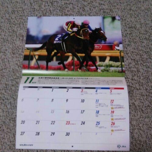 【競馬】JRA―VANのプレゼントの当たらなさは異常