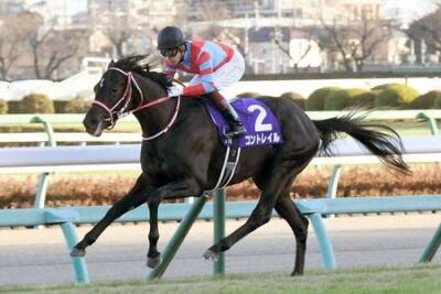 【競馬】 競馬界「無敗の三冠馬が今年2頭出そうです」←まるで盛り上がらない理由とは?