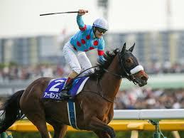 【競馬】 アーモンドアイ、初交配はエピファネイア濃厚。吉田勝己代表明かす