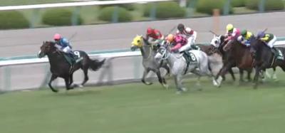 阪神芝2000mの傾向と鳴尾記念登録馬の阪神芝実績