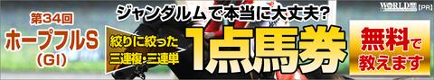 ホープフルステークス2017予想(中山芝2000m)