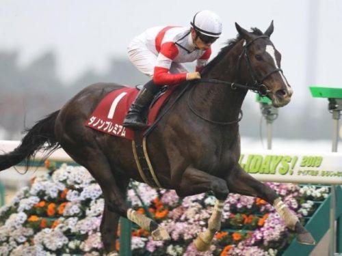 【競馬】高松宮記念から皐月賞までダノンの馬がG1を4連勝しそうな件