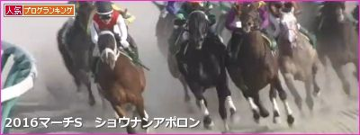 中山ダ1800m/騎手・種牡馬データ(2017マーチS)